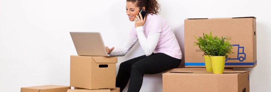 Vente de cartons et fournitures de déménagement